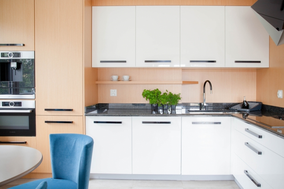 apartament-kuchnia1.jpg